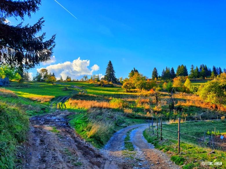 Гела, есен, Родопи,